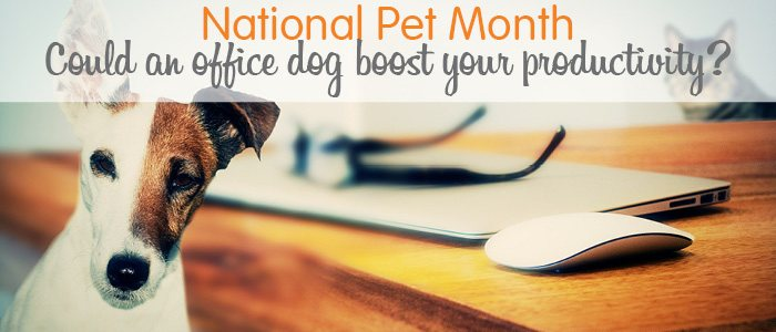 Get Ahead VA National-Pet-Month-Blog